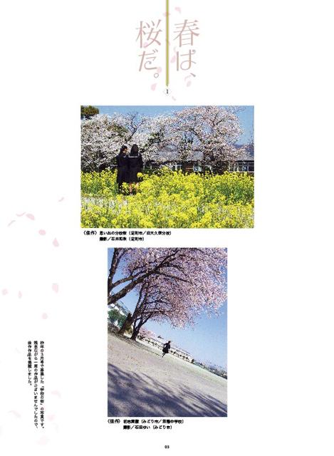 2019年3月-春は、桜だ。